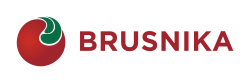 BRUSNIKA - цифровые коммуникации